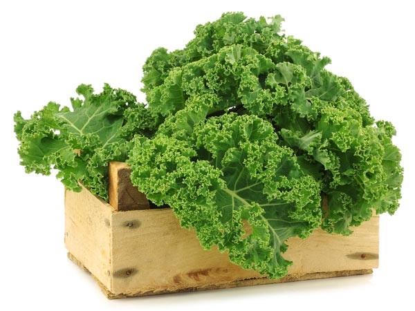 12 thực phẩm tốt nhất nên ăn để gan khỏe mạnh  - Ảnh 3