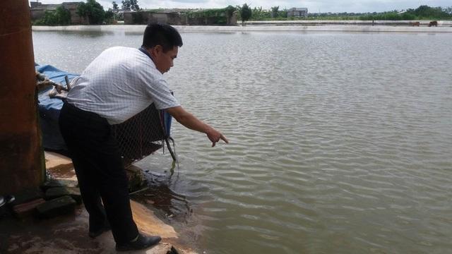 Hải Dương: Bố đẻ bàng hoàng phát hiện hai con ruột tử vong dưới ao - Ảnh 1