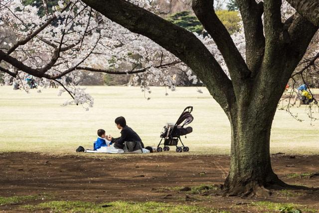 4 nguyên tắc mọi mẹ Nhật đều áp dụng dạy con ở nơi công cộng - Ảnh 2