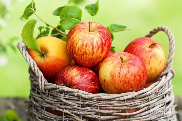 8 loại thực phẩm giúp no lâu, hỗ trợ giảm cân hiệu quả - Ảnh 7