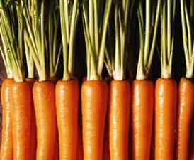 5 thực phẩm lý tưởng bạn nên bổ sung vào mùa đông này - Ảnh 2