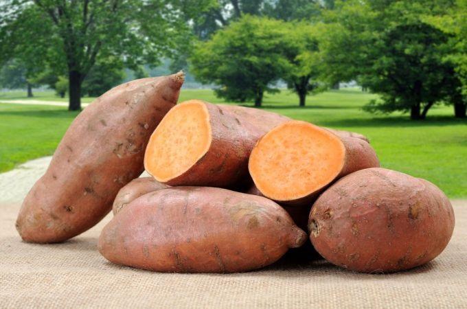 Bí quyết giảm cân với khoai lang là tránh những món như khoai lang chiên, rán,..