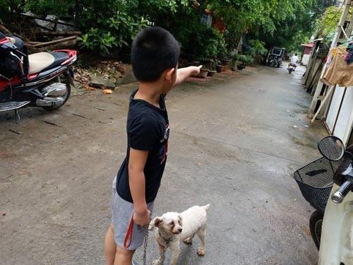 Nghi vấn bé trai 5 tuổi bị người phụ nữ trẻ bắt cóc giữa trưa ở Hà Nội - Ảnh 1