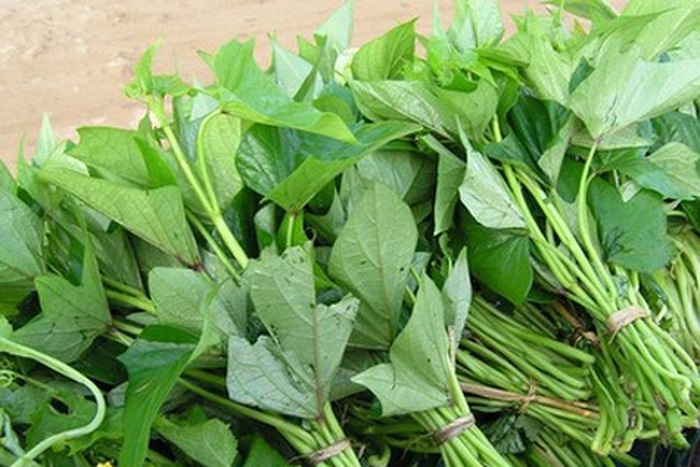 Rau lang là một loại thực phẩm nhuận tràng bạn nên ăn khi bị bệnh trĩ.