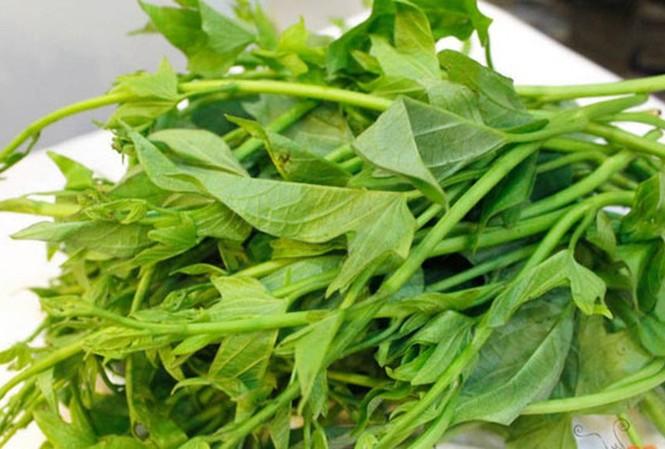 Rau lang: Cực tốt và cực độc, biết mà tránh khi ăn kẻo 'rước họa vào thân' - Ảnh 4