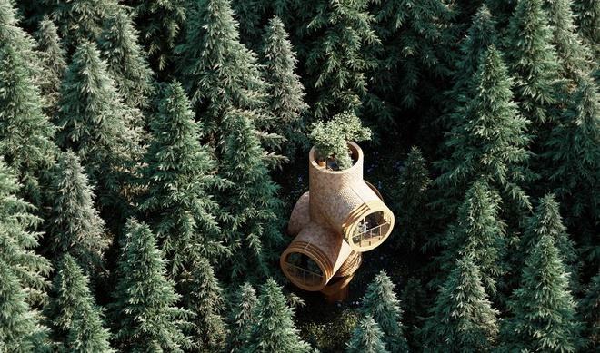 Ngôi nhà hình gốc cây ở Áo - Ảnh 1