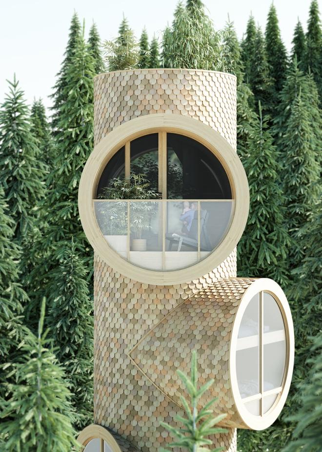 Ngôi nhà hình gốc cây ở Áo - Ảnh 5