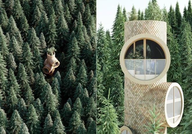 Ngôi nhà hình gốc cây ở Áo - Ảnh 7