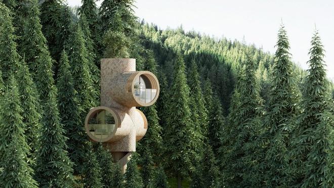 Ngôi nhà hình gốc cây ở Áo - Ảnh 9
