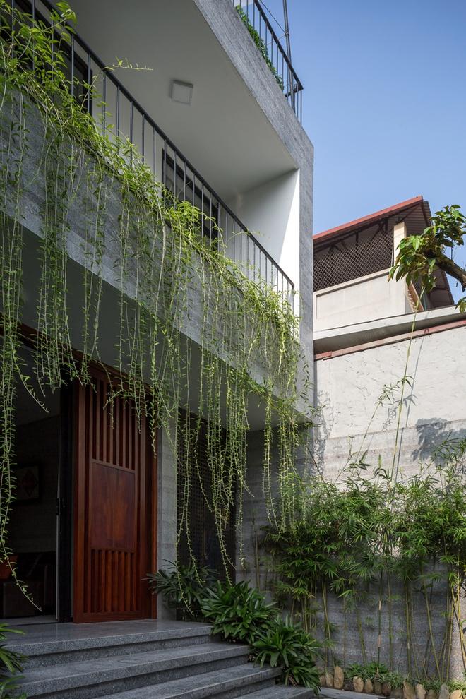 Nhà thiết kế với nhiều khu vườn nhỏ bên trong - Ảnh 2