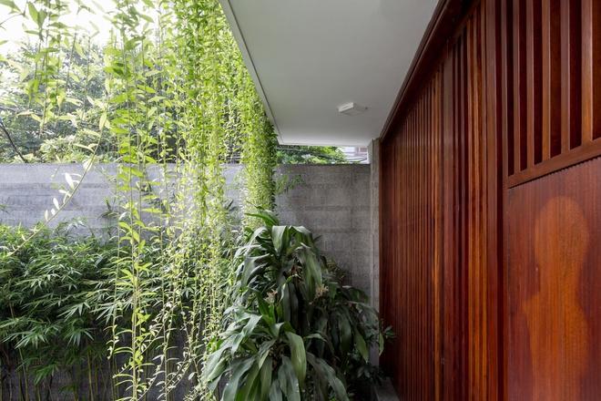 Nhà thiết kế với nhiều khu vườn nhỏ bên trong - Ảnh 3