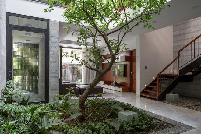 Nhà thiết kế với nhiều khu vườn nhỏ bên trong - Ảnh 4