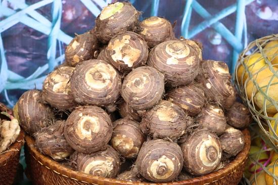 Loại củ xù xì tốt gấp 1,5 so với khoai tây, được ví là 'cội nguồn của tuổi trẻ', ít người biết tận dụng - Ảnh 1
