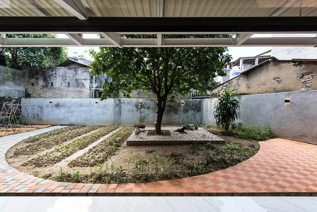 Nhà hình thang với khu vườn bí mật sau lớp mặt tiền - Ảnh 4