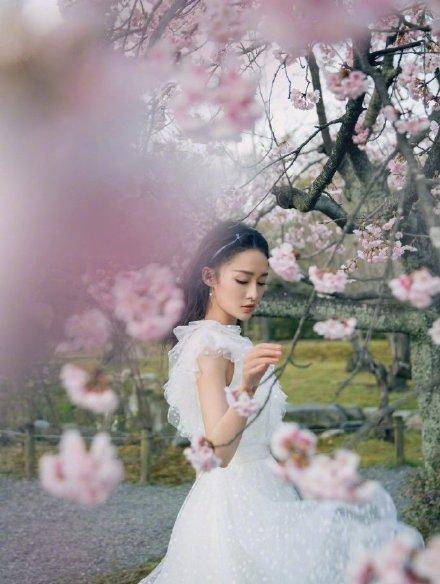 Khi các mỹ nhân Hoa ngữ đọ sắc bên hoa anh đào, ai xứng danh nữ thần? - Ảnh 4