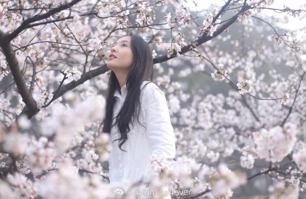 Khi các mỹ nhân Hoa ngữ đọ sắc bên hoa anh đào, ai xứng danh nữ thần? - Ảnh 7