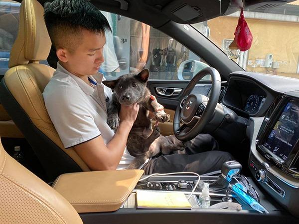 Lộ diện 'con sen' của chú chó Nguyễn Văn Dúi: Đã đẹp trai lại còn siêu giàu - Ảnh 3