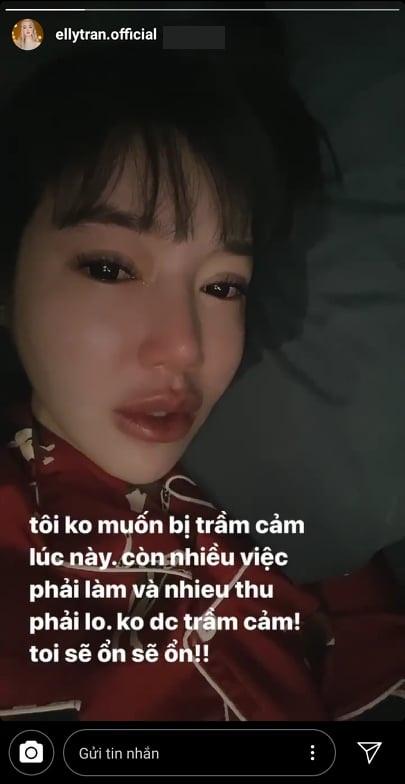 Elly Trần nói hớ để lộ thông tin ly hôn chồng ngoại quốc - Ảnh 4