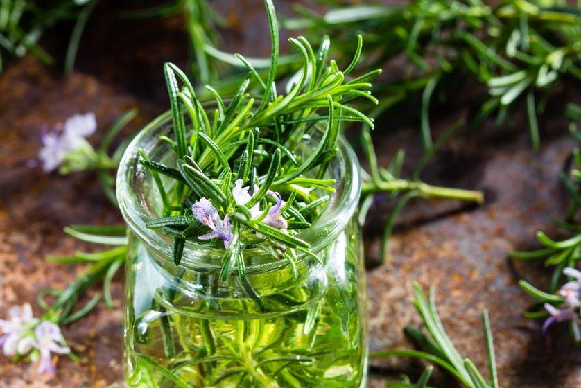 Tinh dầu hương thảo giúp tăng cường trí nhớ cho trẻ - Ảnh 1