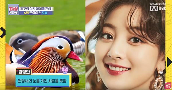 Nhà nhân tướng học dự đoán chuyện tình Kang Daniel - Ji Hyo - Ảnh 1