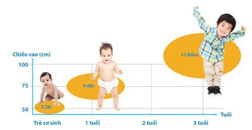Các giai đoạn phát triển và nguyên tắc giúp tăng chiều cao ở trẻ - Ảnh 3