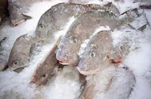 Những sai lầm nghiêm trọng khi ăn cá 99% con người mắc phải - Ảnh 5