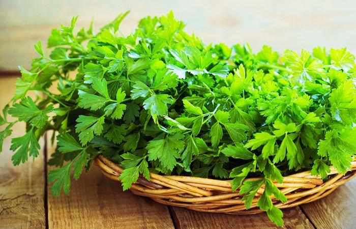 Lá ngò tây parsley chữa hôi miệng tại nhà