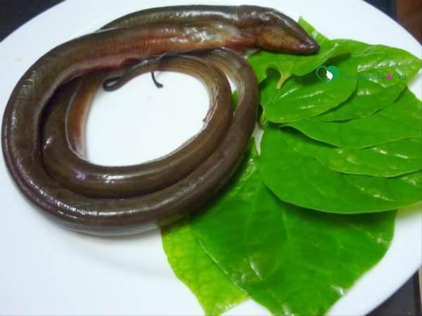 Cách làm món ăn ngon từ lươn hương vị tuyệt hảo chiêu đãi gia đình - Ảnh 1