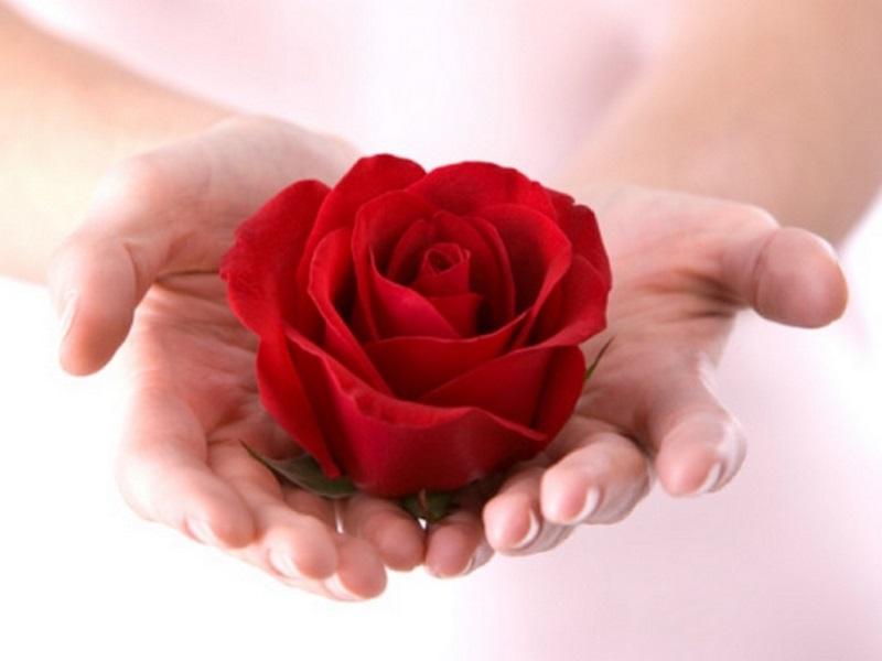 Tự làm nước hoa hồng giúp lỗ chân lông se khít đến 99% và da trắng hồng rạng rỡ - Ảnh 1
