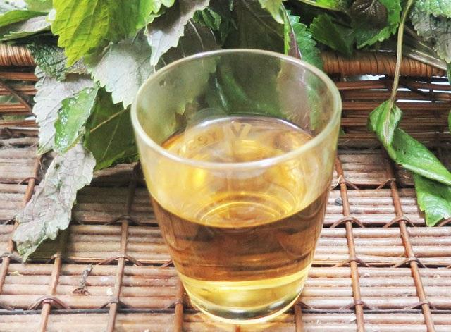 Uống trà lá tía tô mỗi ngày là cách làm trắng da mặt từ bên trong