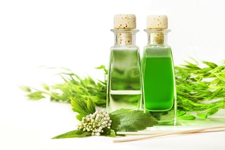 Tinh dầu trà phục hồi tóc hư tổn hiệu quả