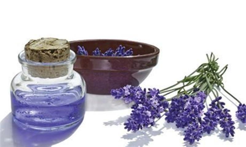 Tinh dầu oải hương là một trong những cách phục hồi tóc hư tổn hiệu quả.