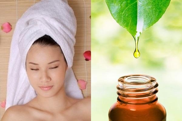 Cách điều trị chấy rận từ dầu trà cho người lớn hiệu quả