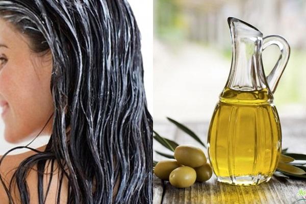 Cách trị chí rận đơn giản và công hiệu với dầu oliu