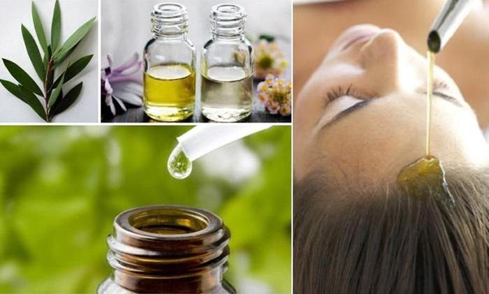 Cách trị gàu hiệu quả cho nữ bằng tinh dầu cây tràm trà