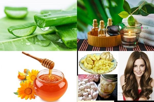 Điều trị rụng tóc hiệu quả từ thiên nhiên