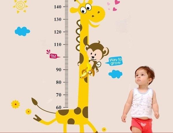Để biết con sau sẽ cao hay lùn bạn chỉ cần nhìn bộ phận này của trẻ - Ảnh 2