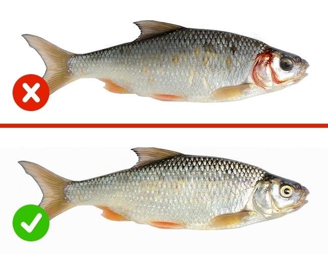 Cách kiểm tra chất lượng của thực phẩm - Ảnh 5