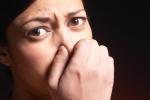 Những mùi khác nhau ở vùng kín báo hiệu điều gì về sức khỏe của phụ nữ?
