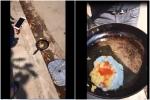 Hà Nội: Nắng nóng kỷ lục, trứng rán không cần lửa cũng chín