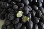 Tìm hiểu uống nước đỗ đen rang có tác dụng gì?