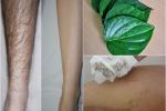 Tẩy sạch lông chân, tay bằng 1 nắm lá trầu không