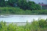 Bạc Liêu:  Bé 9 tuổi chết đuối khi đi bắt cá cùng dì