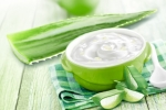 Học các beauty blogger dưỡng ẩm và làm mịn da bằng sữa chua nha đam