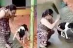 Dân mạng phẫn nộ với clip người phụ nữ chặt chân chó vì nó ăn trộm vịt