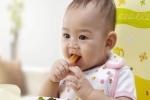 Cách cho trẻ ăn dặm kiểu Nhật mẹ Việt nào cũng cần biết