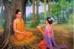 Lời Phật dạy về sự nóng giận, sân si, phụ nữ nên ghi nhớ