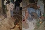 Thanh niên trộm chó bị treo cổ: Cư dân mạng tranh cãi nảy lửa nên tha hay nên đánh