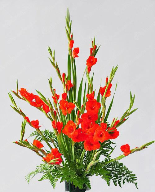 Cắm lá dương xỉ để che bớt đi phần xốp trong bình hoa