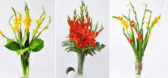 Cách cắm hoa lay ơn ngày Tết đẹp nổi bật nhất